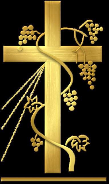 Wspólnota Odnowy w Duchu Świętym Krzew Winny